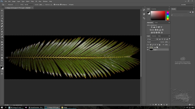 06-photoshop-refine-leaf-texture